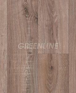 ivc-greenline-sorbonne-527