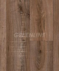 ivc-greenline-sorbonne-548