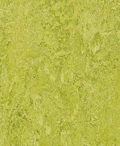 marmoleum-modular-colour-chartreuse-t3224