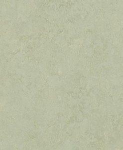 marmoleum-modular-colour-frost-t3884