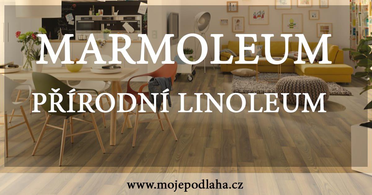 Přírodní linoleum marmoleum a jeho cena mojepodlaha cz