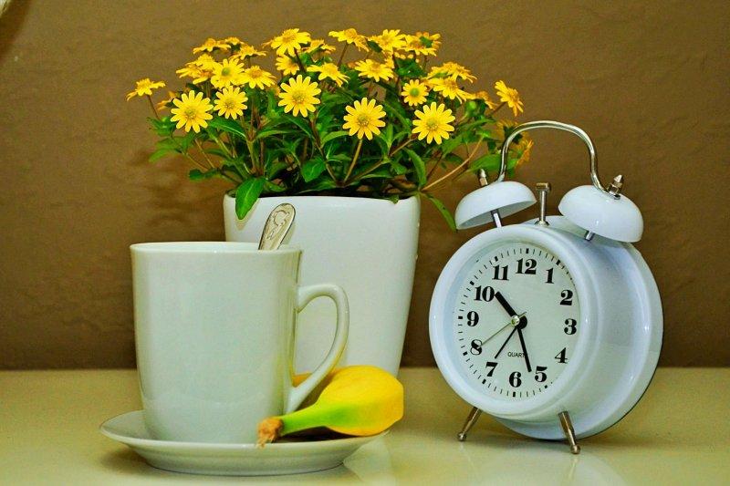 Hrnek s čajem, květiny a klid.